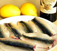 .sardine